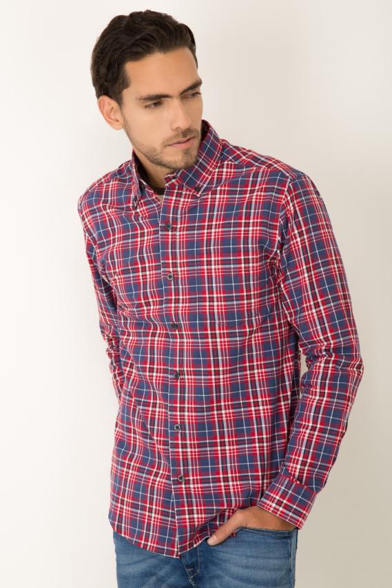Basic Camisa Pronto Ferrar Button Down Ml 2/16