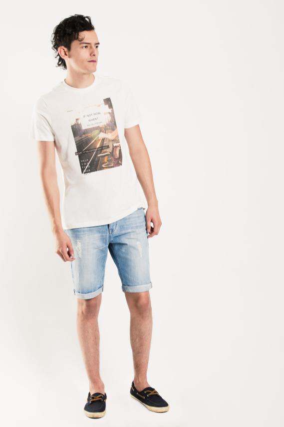 Basic Camiseta Koaj Drako 1a 1/17