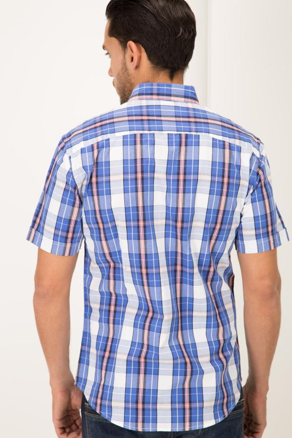 College Camisa Pronto Tokio Button Down M/c 1/16