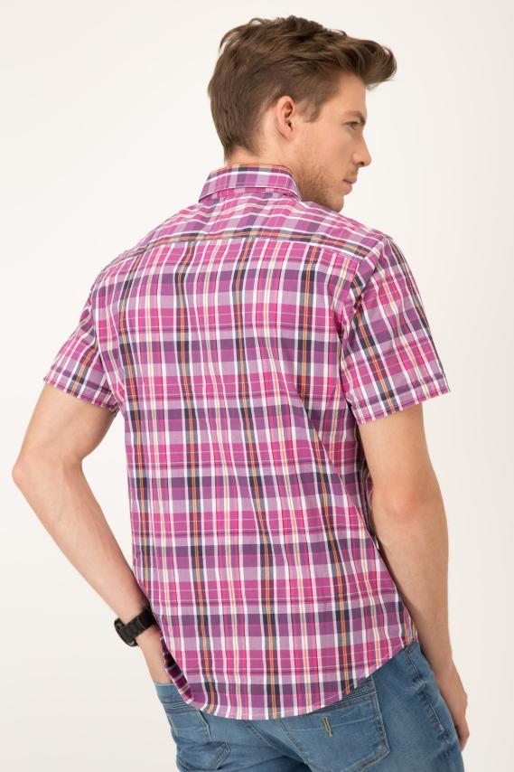 Basic Camisa Pronto Viktor Button Down M/c 2/1