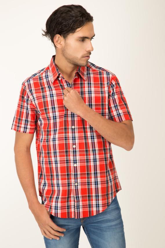 Basic Camisa Pronto Travolta Button Down Mc 2/