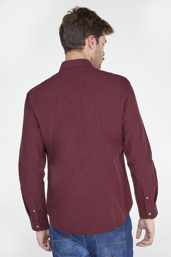 Koaj Camisa Koaj Jude Sport Collar M/l 4/19