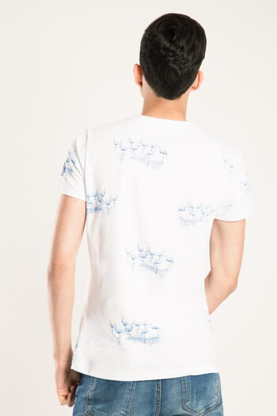 Jeanswear Camiseta Koaj Kolit 2/17