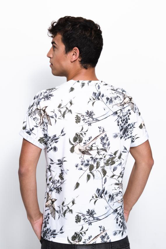 Jeanswear Camiseta Koaj Gambiax 2/18