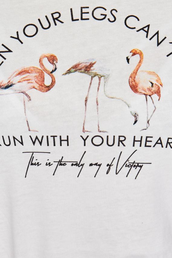 Koaj Camiseta Koaj Florenz P 4/18