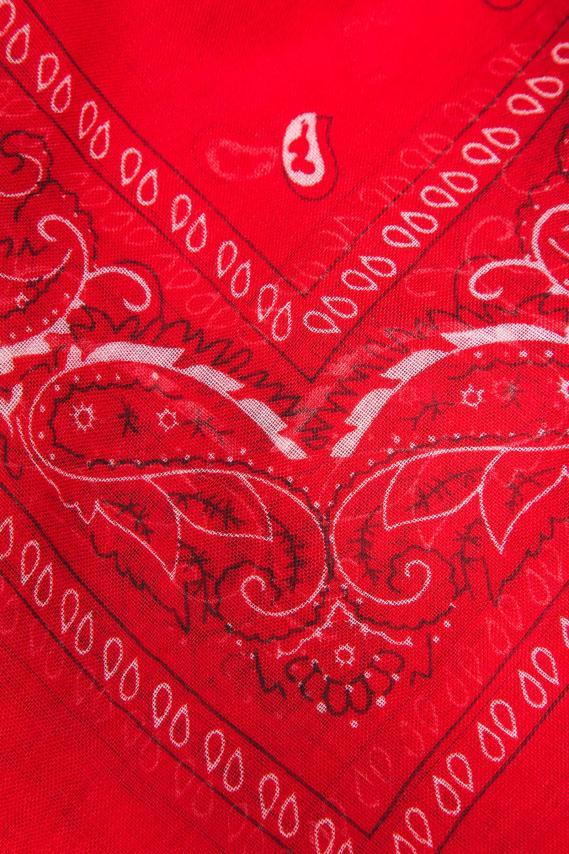 Jeanswear Estola Koaj Rinatia 1/18